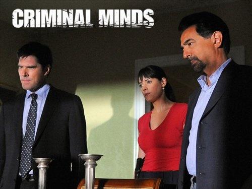 Criminal Minds, Season 6