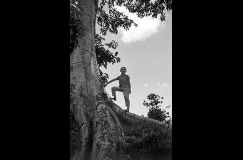 写真歴史博物館 企画写真展 「ブラジルの大地に生きた写真家・大原治雄」 | 写真展・ フジフイルム スクエア(FUJIFILM SQUARE)