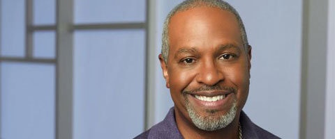 Recent Role:      Richard Webber on Grey's Anatomy    Gender:      Male    Born:      10-26-1954    Birthplace:      Cleveland, Ohio, USA    Birth Name:      James Pickens Jr.    AKA:      James Pickens, Jr. James Pickens, James Pickins Jr., Jim Pickens Jr.