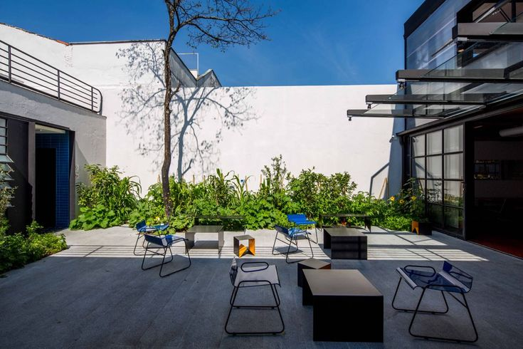 <p>In São Paulo's trendy Vila Madalena, TUJU restaurant is a unique gourmet experience. This Michelin starred restaurant is renowned for its use of non-conventional plant based ingredients grown in th