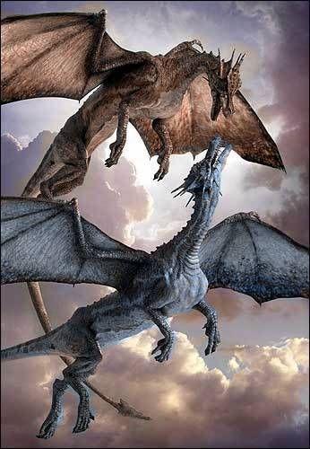 Два дракона | Галерея драконов, изображения драконов, картинки драконов, рисунки драконов