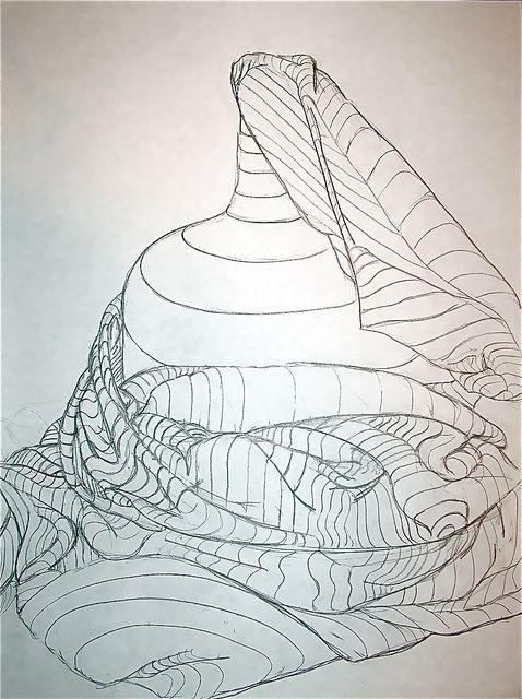 Cross Contour Line Drawing Fruit : Best images about cross contour on pinterest dollar