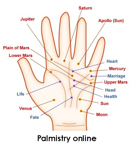 The Elements in Palmistry