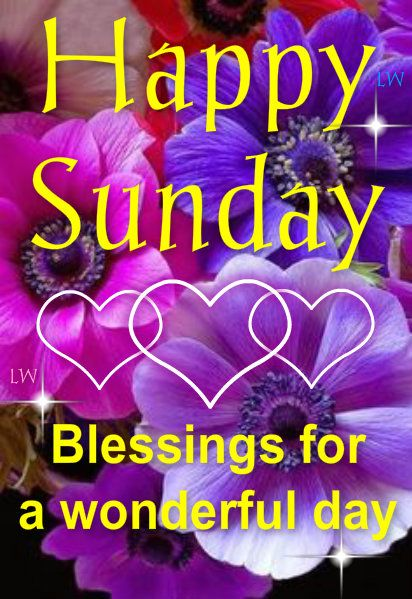 Happy Sunday!! Thank you for your amazing support and beautiful contributions! I really am grateful to you all.