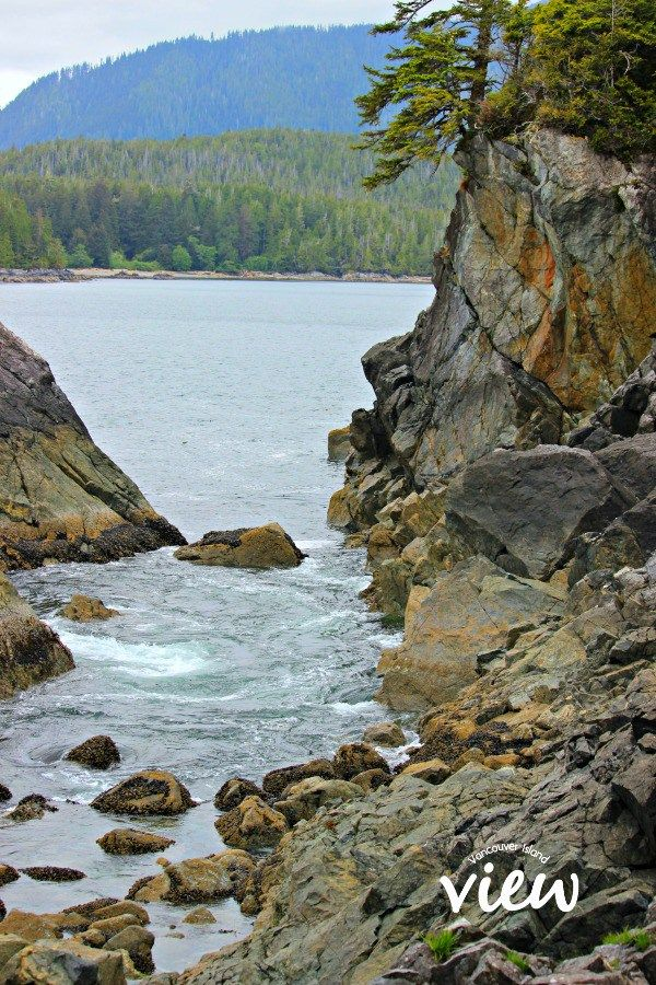 Exploring Hot Springs Cove. Hot Springs Cove is a tour destination you should not miss while in Tofino on Vancouver Island