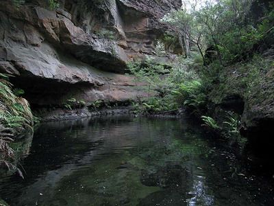 Mount Wilson - Wollangambe River Walk - Wollangambe River is a remnant of true beauty, it is surrounded by secluded white sand beaches and a rugged gorge. The area provides unlimited opportunity for the visitors to enjoy. Plenty of swimming places to explore.