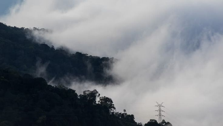 4K Time lapse clouds moving over tree highland forest. Foggy morning landscape at Titiwangsa mountains. Malaysia destinations and nature