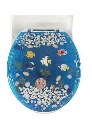 Best 25 D shaped toilet seats ideas only on Pinterest Toilet