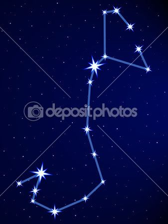 constelação Scorpius, Escorpião - Pesquisa Google