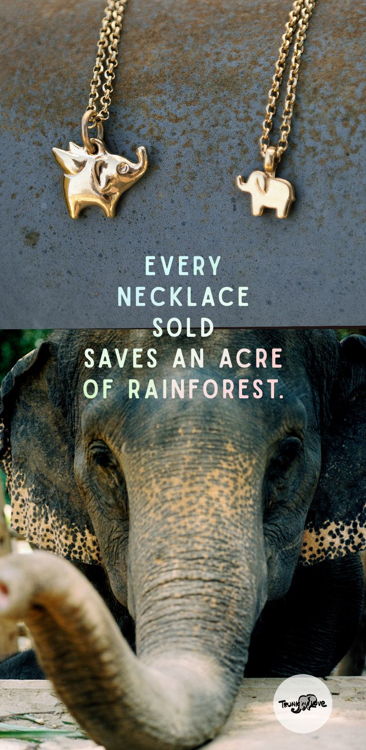 $48 - Look cute/save the world in an adorable elephant necklace from Trunk in Love  Photo credit for the adorable elly in this pin: Tanel Teemusk via Flickr