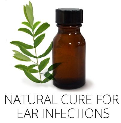 treating ear infection with tea tree oil (also try peroxide, garlic, goot, garlic oil, and breastmilk. fyi.)
