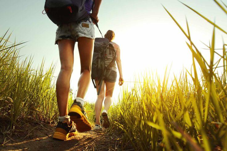 туристы в лесу: 20 тыс изображений найдено в Яндекс.Картинках