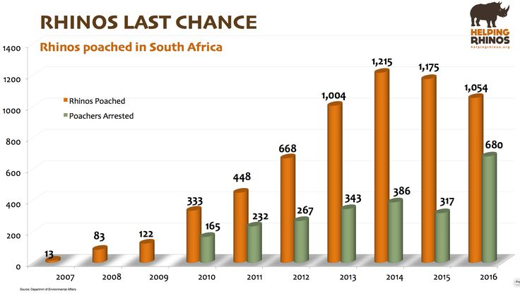 South Africa today released the official poaching stats for 2016. The number of rhino poached fell slightly to 1,054 (from 1,175 in 2015). This is still a large number and one we must continue to reduce more significantly. 🦏 🦏 🦏 Read our thoughts here: https://www.helpingrhinos.org/…/1…/2016-rhino-poaching-stats