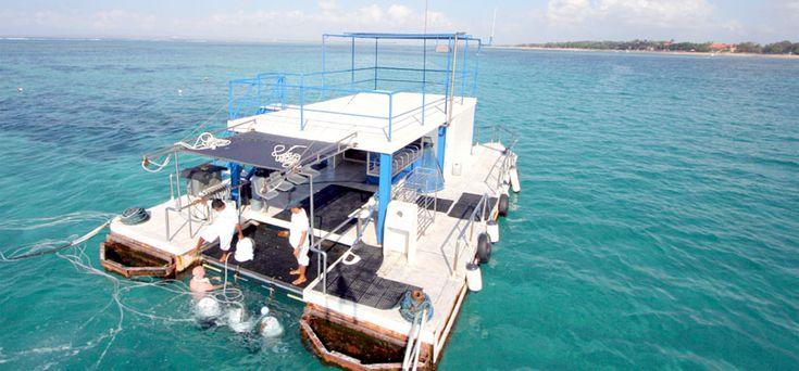 Bali SeaWalker - Views In Bali SeaWalker