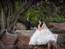 Kings Park, Perth WA. #trees #wedding #photo #nature #kingspark