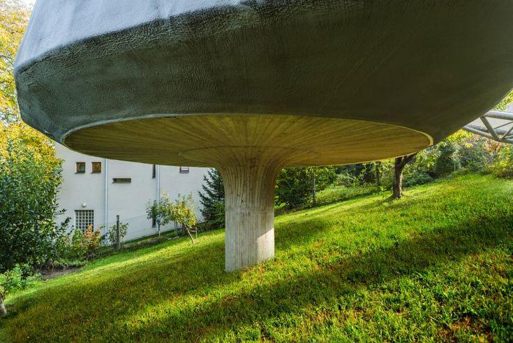 House in the Orchard by Šepka Architekti
