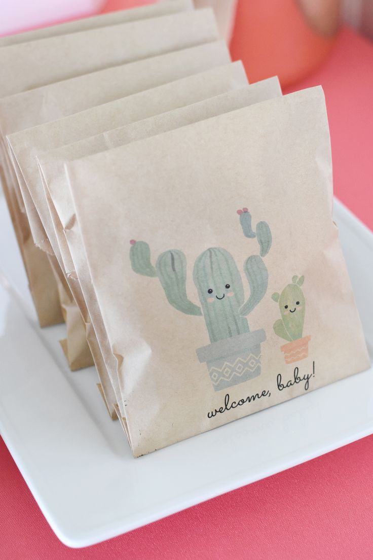 Cactus Baby Shower Goodie Bags Project