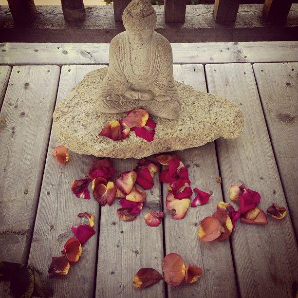 Rose Petals and Buddha