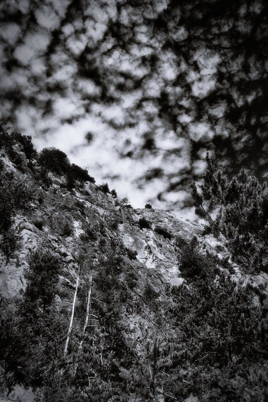 bwstock.photography  //  #rock #sky #trees