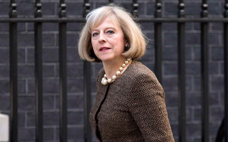 Doing a good job as Home Secretary is what counts, not making grand gestures, Theresa   May tells Allison Pearson.