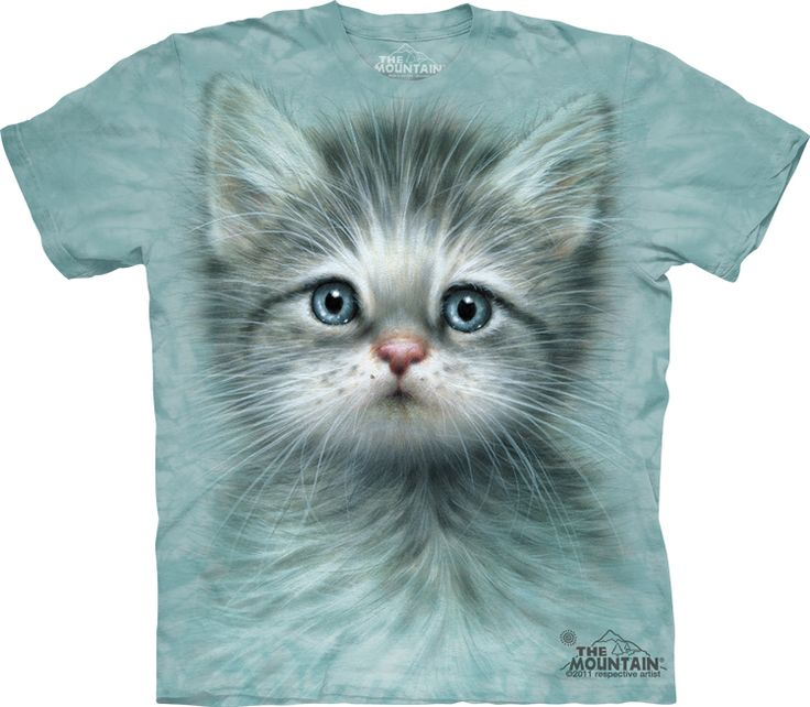 Blue Eyed Kitten T-Shirt - Click image to see hundreds of different animal t-shirts #themountaintees