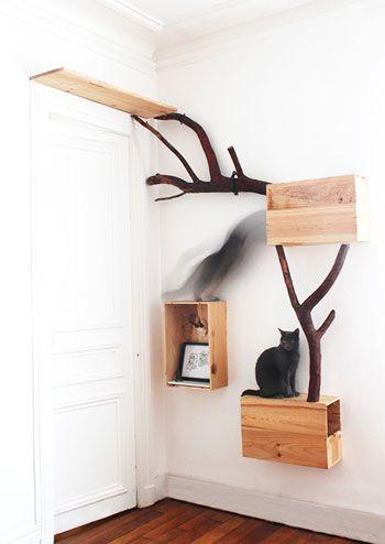 FUL[L] Mobilier pour animaux urbains - Arbre à chat  cats pet furniture chats wood bois branches http://amzn.to/2qVpaTc