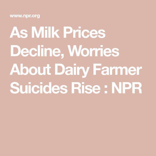 As Milk Prices Decline, Worries About Dairy Farmer Suicides Rise : NPR