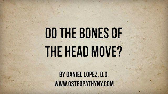 Do The Bones Of The Head Move?