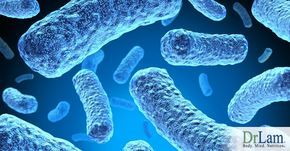 Stealth infections and post viral fatigue are insidious pathogen states with severe consequences for health if left unattended.