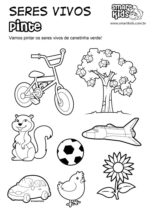 17 mejores ideas sobre Seres Vivos E Inertes en Pinterest | Seres ...