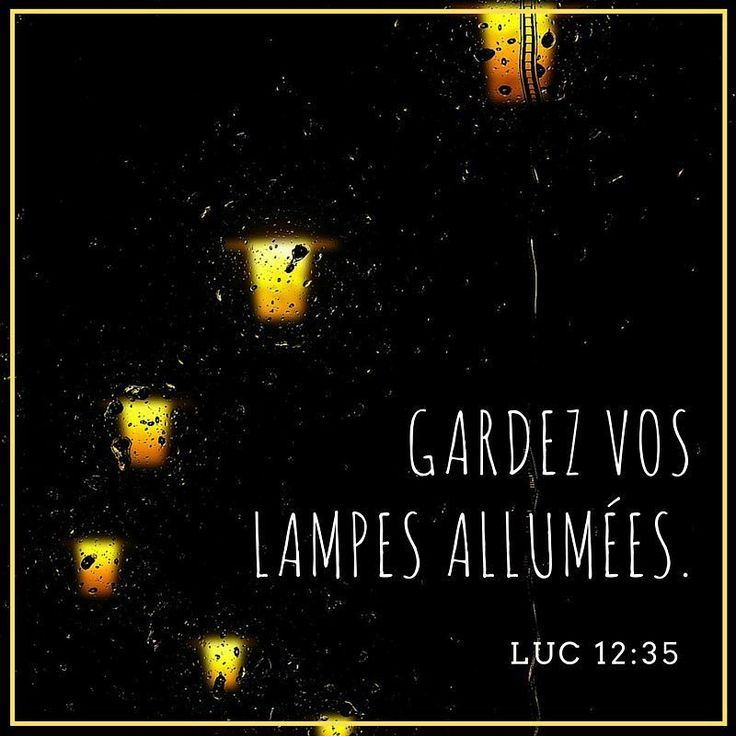 #Persévère tiens bon le #roi viendra et tu seras #heureux s'il te trouve éveillé. #bible #versetdujour