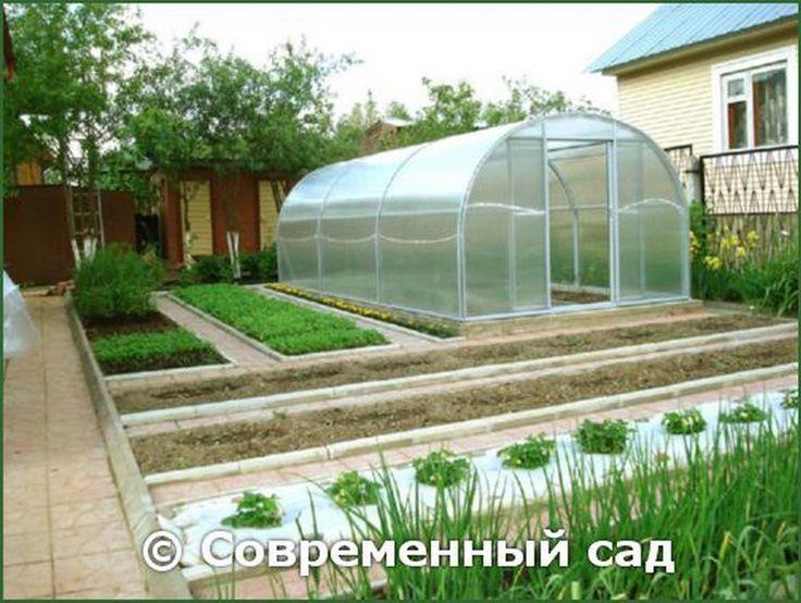 планирование сада и огорода на участке: 24 тыс изображений найдено в Яндекс.Картинках