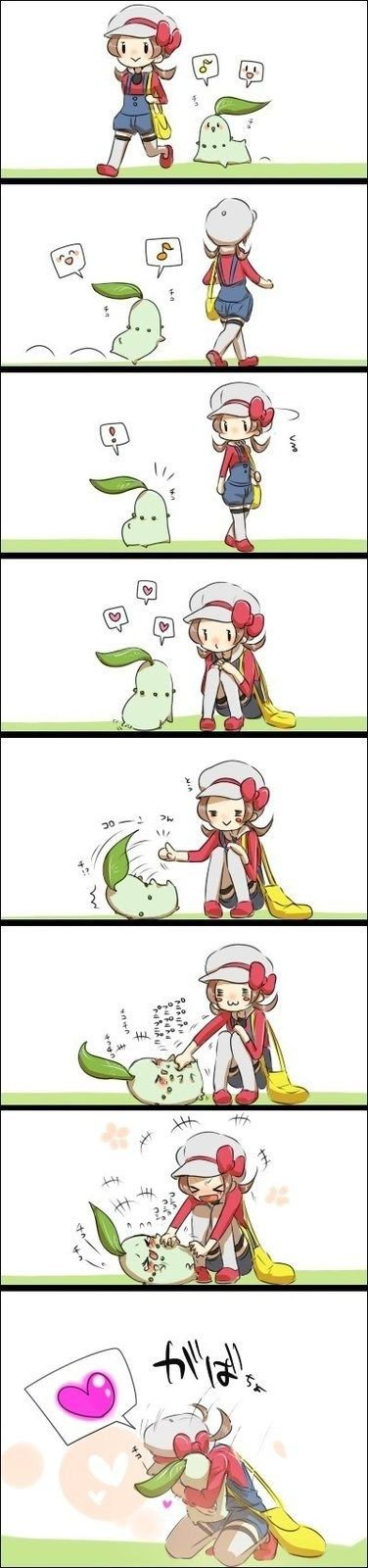 Pokémon love