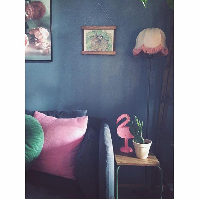 Alle disse rosa tingene som kom og gikk, ikke visste jeg at de skulle inn i leiligheten min. #marissjokoladefabrikk #gjenbruk #bruktfunn #marissjokoladefabrikk #boligplussminstil #boligplusss_lamper #boligpluss_planter #rom123stue #boligplussfarger #skonahem #plantsrule #plantlove #jotunkveldshimmel #urbanjunglebloggers #indoorplants #industrialliving #hem_inspiration #bonytt #plantsonblue #loppis #rom123favoritt #boligpluss_kos #flamingo #pink #pinkonblue #flamingofever