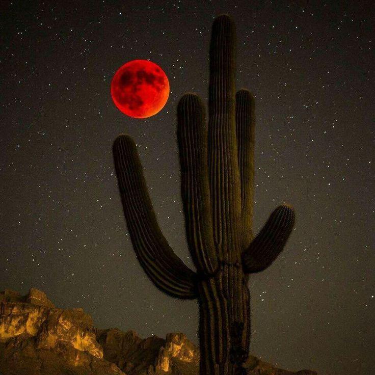 blood moon 2019 arizona - photo #44