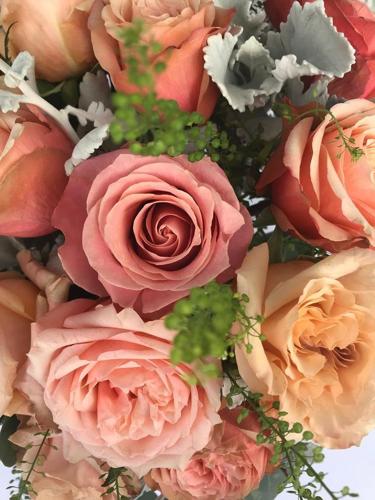 Wildflora Los Angeles florist Ventura Blvd Studio City California flower delivery bouquet floral arrangement wedding event special occasion shop store garden gifts eucalyptus green foliage radiant love blue grey coral pale pink peach rose orange pink dusty miller glass vase