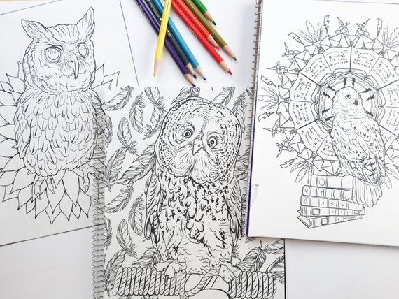 SALE 3 Harry Potter Adult Coloring Book Notebook With The Owls Hedwig