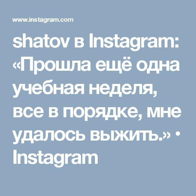 shatov в Instagram: «Прошла ещё одна учебная неделя, все в порядке, мне удалось выжить.» • Instagram