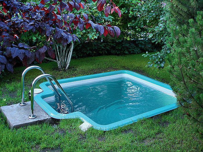 Dipping Pool In Blue Very Small But Deep Surrounded By Various Shrubs In A Garden With Green Gras Small Swimming Pools Cool Swimming Pools Small Pool Design