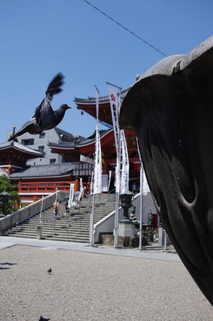 Osu-kannon-temple (名古屋) , j@pan