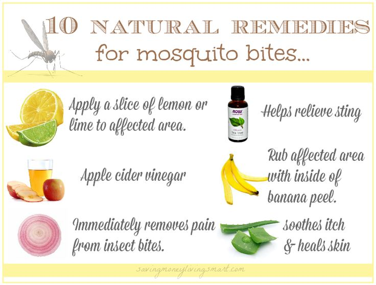 Natural Remedy For Bug And Mosquito Bites