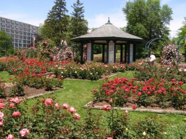 The Rose Garden MY CNY Parks: Thornden Park All Photos Copyright Samuel D.