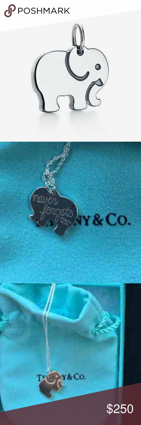 Elephant Never Forgets Tiffany &a Count Charm 🐘 NEW, rare, and no longer sold. Beautiful Tiffany&Co Elephant Never Forgets Charm. Chain not included. Box and bag included. Having a hard time parting with this beauty. Tiffany & Co. Jewelry