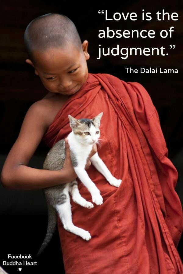 Love is the absence of judgement. ~The Dalai Lama