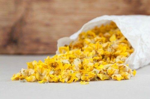 バーバスカムやキャンドルウィックなどいろいろな名前を持つマレインは、日本名をビロードモウズイカといい、古くから鎮静や咳、痰を取り除くハーブとしてその効能が認められてきました。花や茎、葉を乾燥させたバーブティーが一般的ですが、花をオリーブ油に浸したものを打身や関節痛等の湿布薬としても利用します。