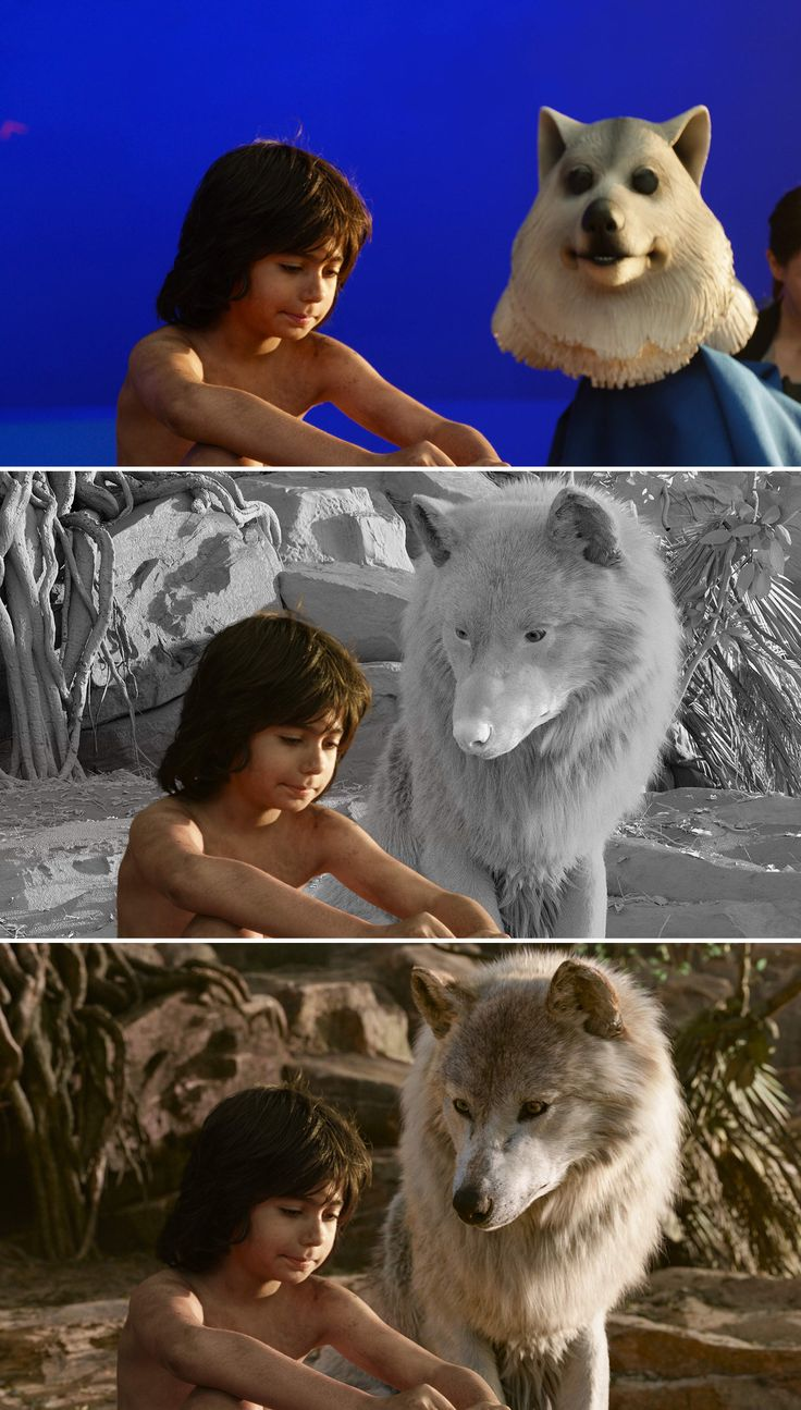 Neel Sethi (Mowgli) performed on the bluescreen set with a puppeteered version of Raksha the wolf. MPC built a digital version of Raksha, as well as a completely synthetic environment. The final render made use of Pixar RenderMan's new RIS raytracing technology to provide for photorealistic results.