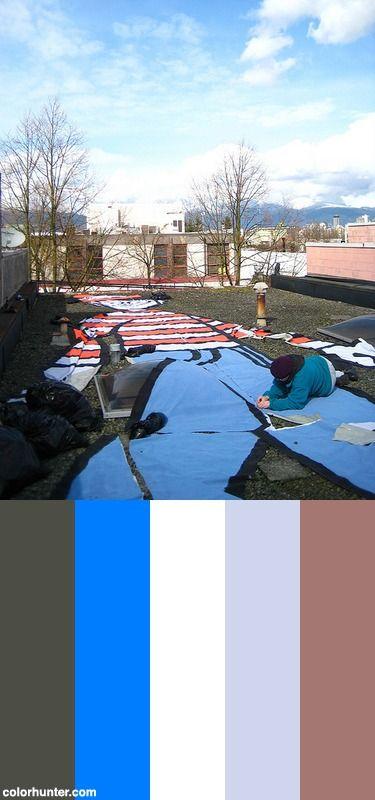 Where's Waldo Color Scheme