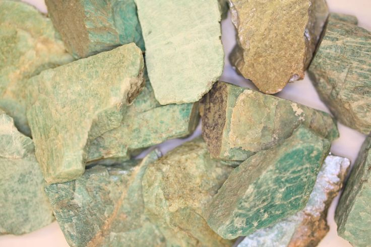 Steinhaugenmoss