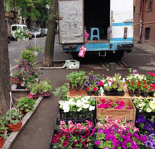 Свежие цветы! / Fresh flowers on the street of #Odessa. #Ukraine #flowers #popup #pickup #streets #oldtown