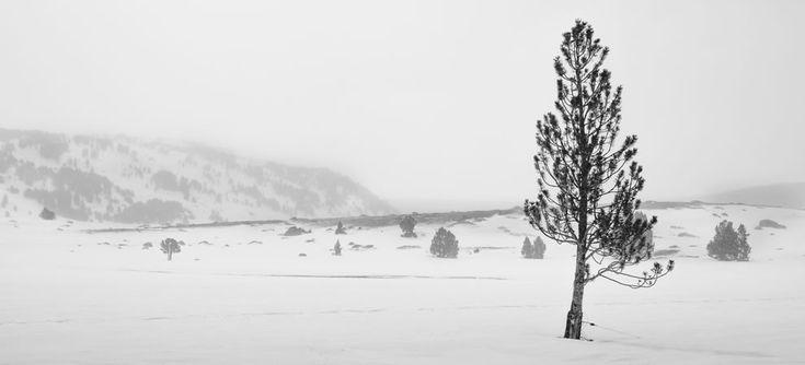 Disfruta de los paisajes invernales de la Cerdanya que te quitarán el aliento...